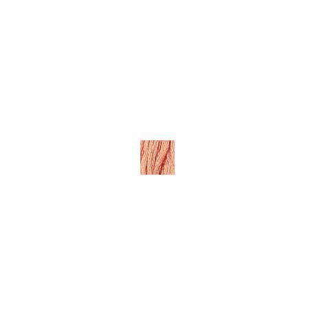 Мулине Grenadine pink DMC760 фото