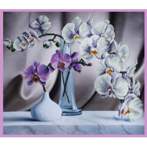 Набор для вышивания Картины Бисером Р-243 Натюрморт с орхидеями