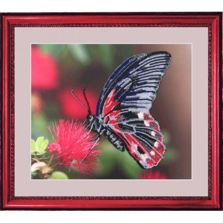 Набор для вышивания бисером Butterfly 103 Бабочка фото