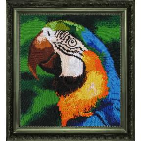 Набор для вышивания бисером Butterfly 504 Попугай