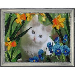 Набор для вышивания бисером Butterfly 554 Котенок в цветах