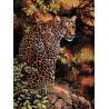 Набор для вышивки крестом Dimensions 35209 Leopard's Gaze фото