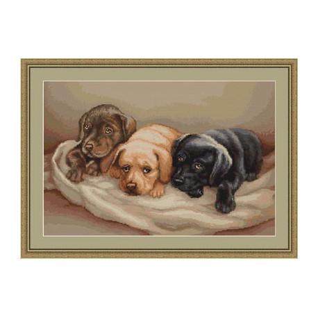 Набор для вышивки крестом Luca-S Три собачки B434 фото