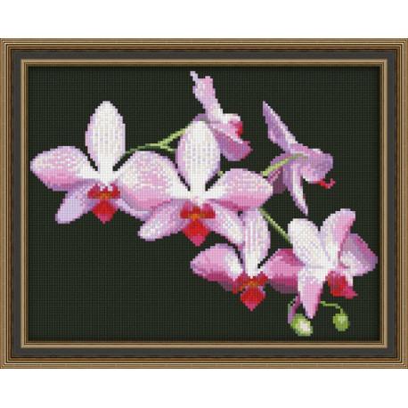 Набор для вышивки крестом Юнона 0116 Ветка орхидеи фото