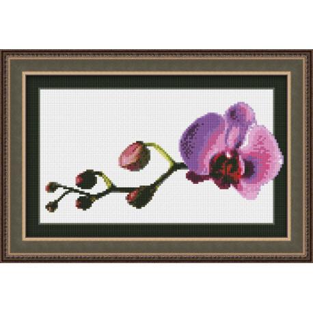 Набор для вышивки крестом Юнона 0108 Маленькая орхидея фото