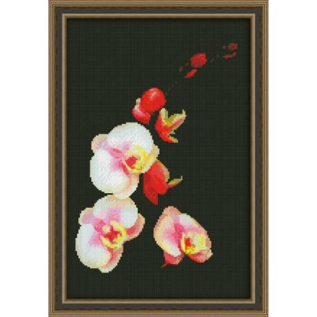 Набор для вышивки крестом Юнона 0118 Розовая орхидея фото