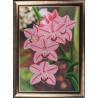Набор для вышивания бисером Butterfly 208 Орхидеи фото