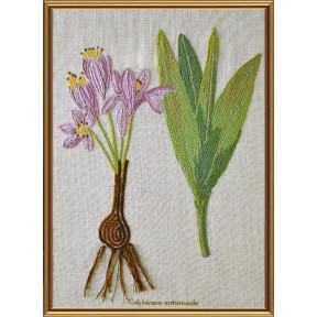 Набор для вышивания нитками Нова Слобода ЕМ-4022 Ботаника. Безвременник осенний