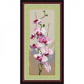 Набор для рисования камнями Dream Art.  30038 Орхидея(панель)