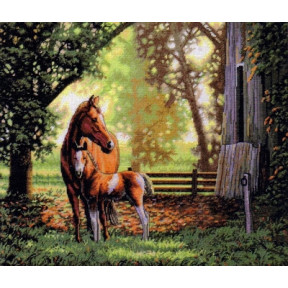 Набор для вышивки крестом Dimensions 35260 Mare and Foal