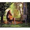 Набор для вышивки крестом Dimensions 35260 Mare and Foal фото