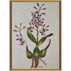Набор для вышивания нитками Нова Слобода ЕМ-4025 Ботаника. Энциклия сердценосная