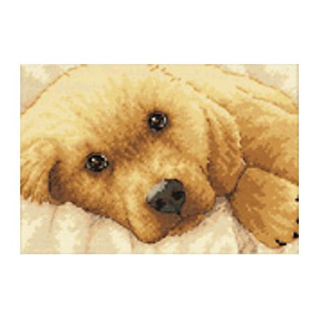Набор для вышивки крестом Dimensions 65038 Golden Puppy фото