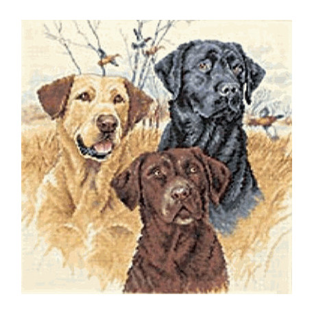 Набор для вышивания Dimensions 35096 Great Hunting Dogs фото