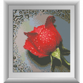 Набор для рисования камнями алмазная живопись Dream Art Роса на красной розе (квадратные, полная) 30288D