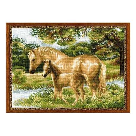 Набор для вышивки Риолис 1258 Лошадь с жеребенком фото
