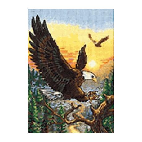 Набор для вышивки крестом Dimensions 06759 Eagles фото