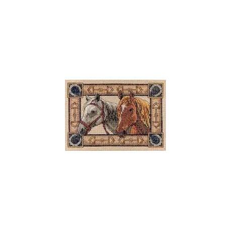 Набор для вышивки крестом Dimensions 06848 Equine Pair фото