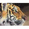Набор для вышивки крестом Dimensions 35171 Regal Tiger фото