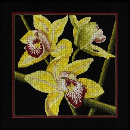 Набор для вышивки RTO M264 Орхидеи Цимбидиум фото