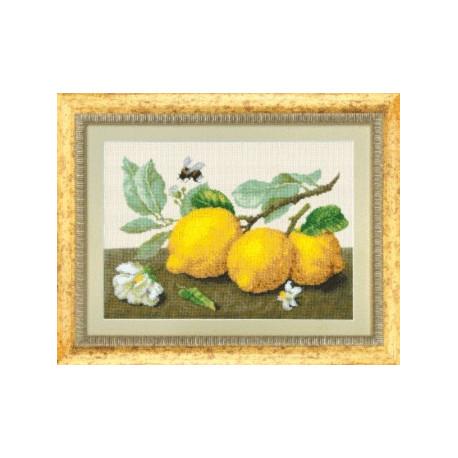 Набор для вышивки крестом Чарівна Мить М-104 Лимонная сиеста