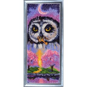 Набор для вышивания бисером Butterfly Совушка-весна 542