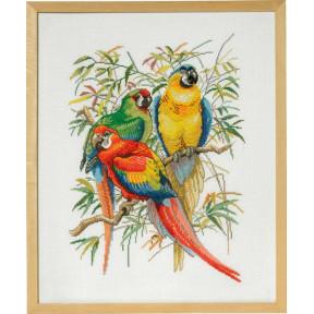 Набор для вышивания Eva Rosenstand Parrots 72-292