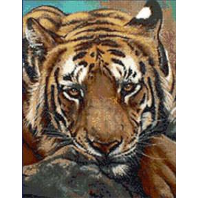 Набор для вышивания Kustom Krafts JW-005 Siberian Tiger