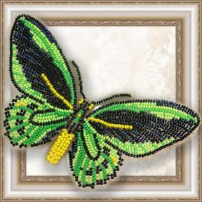 Набор для вышивки бисером бабочки на прозрачной основе Вдохновение Птицекрыл Приам BGP-008