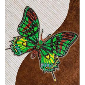 Набор для вышивки бисером бабочки с водорастворимым флизелином Вдохновение Тейнопальпус Императорский NBFL-031