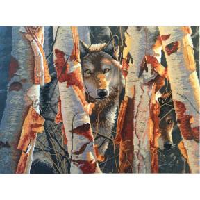Набор для вышивания крестом Classic Design Лесной страж 4495