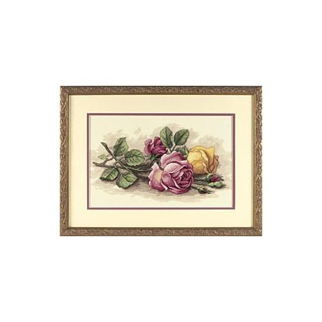 Набор для вышивания крестом Dimensions 13720 Rose Cuttings фото