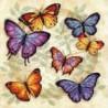 Набор для вышивания Dimensions 35145 Butterfly Profusion фото