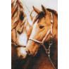 Набор для вышивки крестом Золотое Руно З-010 Преданность фото