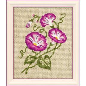Набор для вышивания бисером Риолис 1251 Полевые вьюнки
