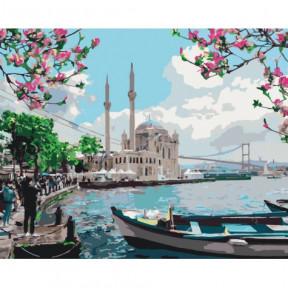 Турецкое побережье Картина по номерам Идейка холст на подрамнике 40x50см КНО2166