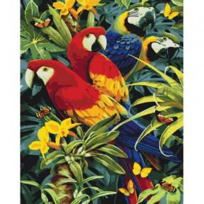 Разноцветные попугаи Картина по номерам Идейка холст на подрамнике 40x50см КНО4028