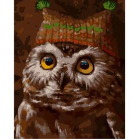Сова в шапке ArtStory подарочная упаковка 40x50см AS0283