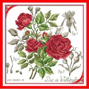 Ботаника. Красная роза Набор для вышивания крестом с печатью на ткани NKF H 5202