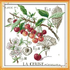 Ботаника. Вишни Набор для вышивания крестом с печатью на ткани NKF J 231