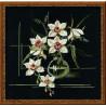 Набор для вышивки крестом Риолис 941 Белая Орхидея фото