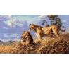 Набор для вышивки крестом Dimensions 03866 African Lions фото