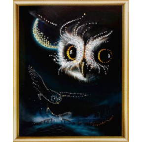 Набор для изготовления картины со стразами Чарівна Мить КС-042 Ночной полет