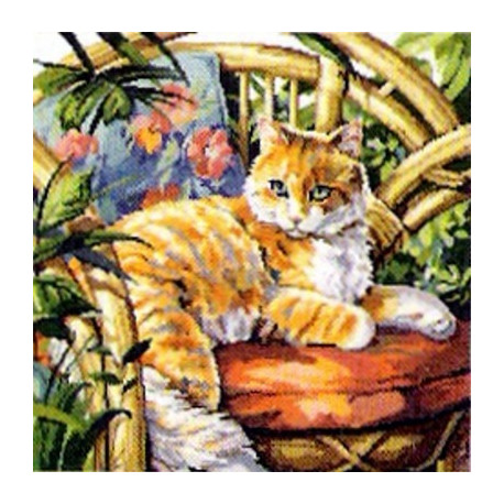 Набор для вышивания Janlynn 023-0559 Cat in the Sun фото