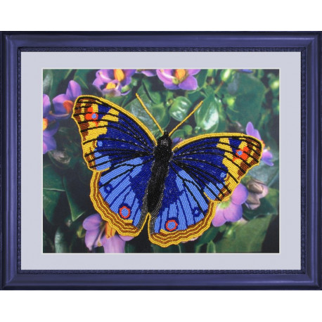 Набор для вышивания бисером Butterfly 101 Бабочка фото