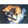 Набор для вышивания крестом Dimensions 03220 Snooze фото