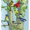 Набор для вышивания Dimensions 35252 Birch Tree Birds фото